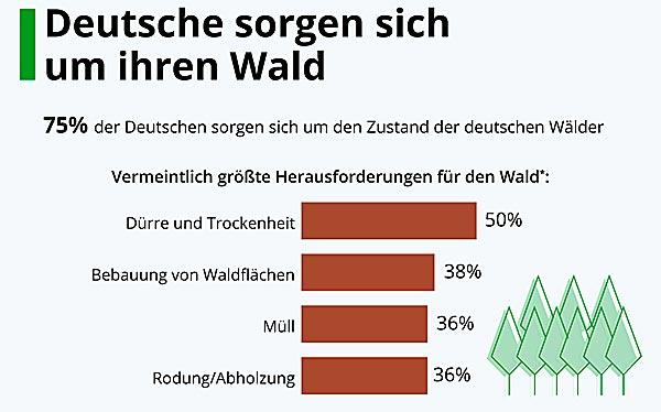 Deutschesorgensichum-Wald1