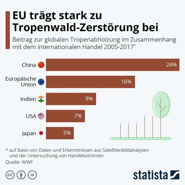 EU zerstoert Regenwald