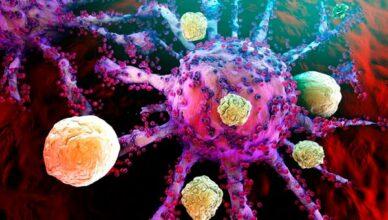Krebs-T-Zellen