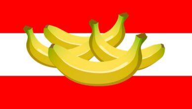 FlaggeOesterreich