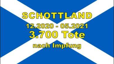 SchottlandImpftote