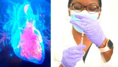 Herzmuskel