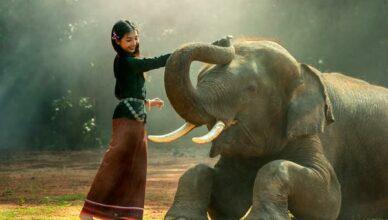 Maedchen Elefant